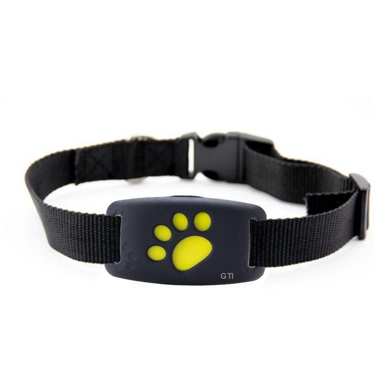 מכשיר איתור לכלבים חתולים ובעלי חיים